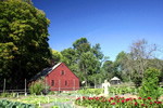 Wick House & garden - Waypoint 15